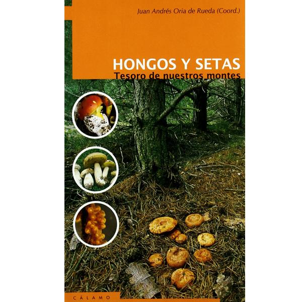 libro hongos y setas, tesoros de nuestros montes