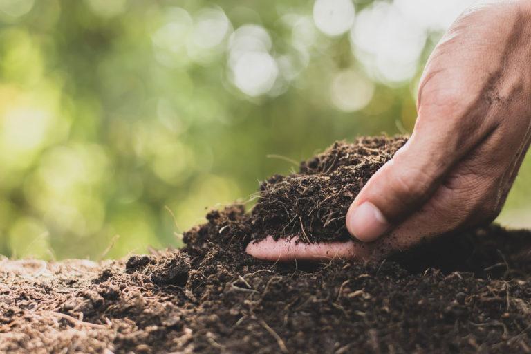 desarrollo rural y sostenibilidad
